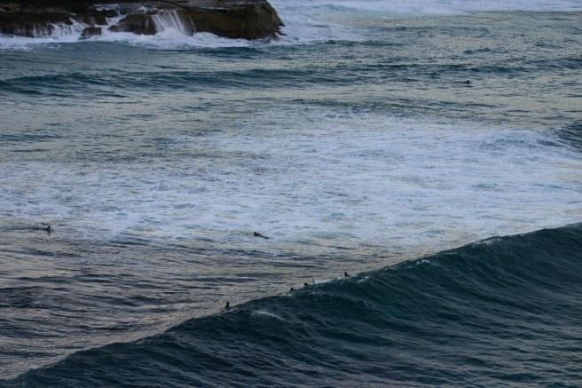 SurfersatBronte